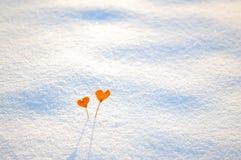 2 винтажных оранжевых сердца tangerine на белом снеге Стоковые Изображения RF