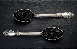 2 винтажных серебряных ложки с черной икрой стерляжины на черном шифере облицовывают предпосылку Взгляд сверху, плоское положение Стоковая Фотография