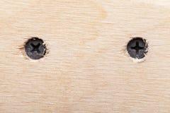 2 винта в грубой деревянной планке Стоковые Изображения RF