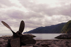 Винт на береге Стоковое фото RF