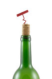 винт пробочки bottleneck бутылки Стоковые Фото