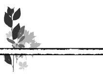 виньетка grayscale травяная Стоковое фото RF