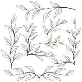 Виньетки от хворостин и листьев Стоковые Фотографии RF