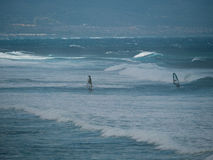 Виндсерфинг на пляже Мауи Hookipa Стоковое фото RF