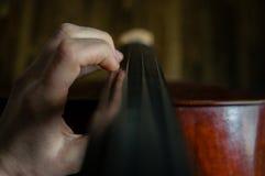 виолончелист Стоковые Изображения