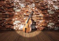 виолончель сольная Стоковые Фото