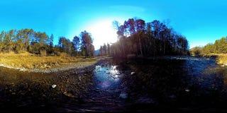 Виртуальная реальность 360 VR одичалые горы, сосновый лес и река пропускает Лучи национального парка, луга и солнца сток-видео