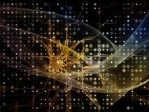 Виртуализация решетки цифров Стоковое Изображение RF