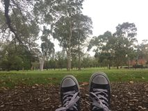 Висеть вне в парке Стоковые Фотографии RF
