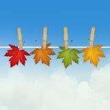 Висеть листьев осени бесплатная иллюстрация