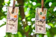 100 висеть долларовых банкнот Стоковые Изображения RF