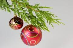 висеть украшения рождества Стоковая Фотография