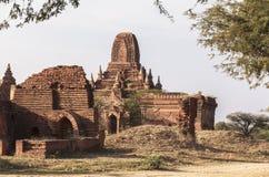 Виски в Bagan, Мьянме Стоковое фото RF