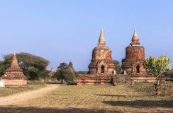 Виски в Bagan, Мьянме Стоковые Изображения RF