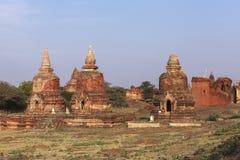 Виски в Bagan, Мьянме Стоковые Фото