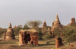 Виски в Bagan, Мьянме Стоковое Фото