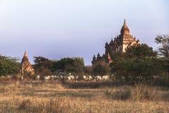 Виски в Bagan, Мьянме Стоковые Изображения