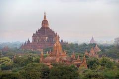 Виски в Bagan на заходе солнца, Мьянме стоковая фотография rf