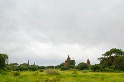 Виски и пагоды в равнинах Bagan, Мьянма Стоковые Фотографии RF