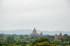 Виски и пагоды в равнинах Bagan, Мьянма Стоковое фото RF