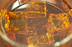 виски льда Стоковое фото RF