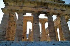 Виски древнегреческия стоковая фотография