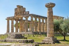 Висок Афины Minerva в Poseidonia Paestum, кампании, Италии стоковая фотография