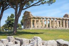 Висок Афины Minerva в Poseidonia Paestum, кампании, Италии стоковые фотографии rf