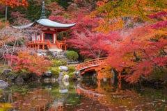 Висок в деревьях клена, сезон Daigoji momiji, Киото, Япония Стоковая Фотография RF
