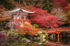 Висок в деревьях клена, momiji Daigoji, Киото, Япония Стоковое Фото