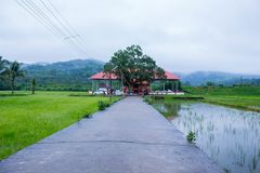 Висок в Керале стоковое фото rf