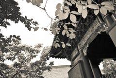 Висок в Пекине, Китай лама Стоковые Изображения