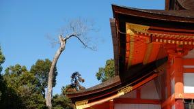 Висок в Японии стоковые фотографии rf