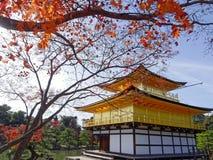 Висок Дзэн Японии золотой Стоковая Фотография RF