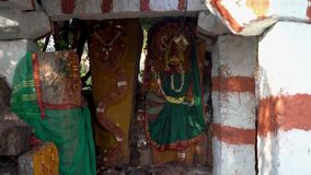 Висок змейки в Индии outdoors сток-видео