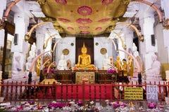 Висок зуба Будды Стоковая Фотография RF