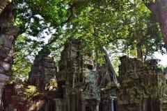 Висок Камбоджи Стоковое Изображение RF