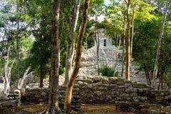 Висок картин и деревьев Стоковое Фото