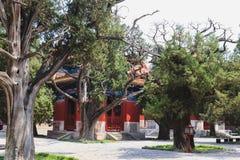Висок Конфуция, Пекин, Китай стоковое фото rf