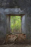 Висок окна старый Стоковое Фото