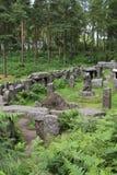 Висок друидов, северный Йоркшир Стоковое Изображение RF