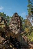 Висок сома животиков в комплексе Angkor Wat, Камбодже, Азии стоковые изображения rf
