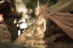 висок статуи Будды тайский Стоковые Изображения