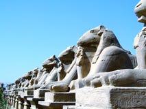 висок статуи 14 karnak Стоковые Фотографии RF