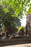 висок Таиланд ayutthaya старый Стоковые Фото