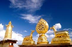 висок Тибет housetop Стоковая Фотография