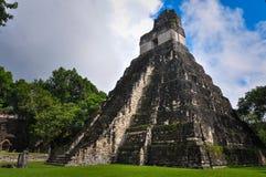 Висок ягуара, руин Tikal, Гватемалы Стоковые Фотографии RF