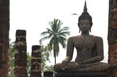висок ayutthaya Стоковые Изображения