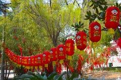 Висок Baotong Стоковая Фотография RF