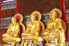 висок 3 buddhas китайский стоковые фото